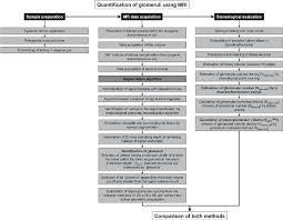 Flow Chart Of The Described Method Sample Preparation Is