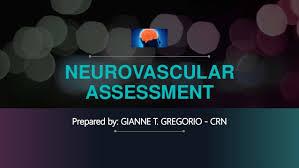 Neurovascular Assessment