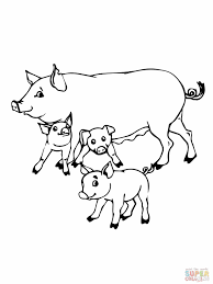 Small Picture Baby Pig Coloring Pages Cartoon Pig Coloring Pages Cartoon