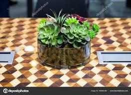 Kleiner Schöner Baum Im Glas Auf Dem Tisch Dekorieren Stockfoto