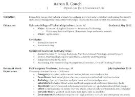 Resume Builder Help Cool Build Your Resume How To Build A Resume In Word Build A Resume