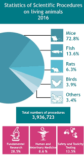 Numbers Of Animals Understanding Animal Research