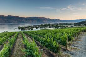 Save a vacation paradise at quail ridge b&b to your lists. The Westside Wine Trail Kelowna Real Estate