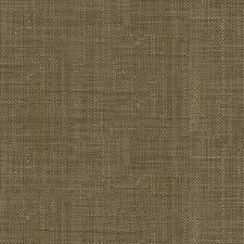 Small Picture 26 best Abbey Shea Vogue Indoor Multipurpose Fabric Collection