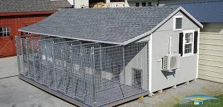 inside dog kennels for large dogs
