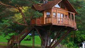 tree house plans for adults. Interesting Adults 60 Wood TREE And Log House Ideas 2017  Awesome Tree Design Ideas 1 To Plans For Adults