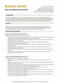 Sample Of Executive Resumes Sales And Marketing Executive Resume Samples Qwikresume