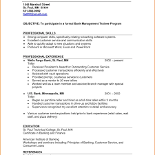 Cute Resume Pizza Delivery Gallery Entry Level Resume Templates