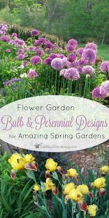 you can add bulbs to an existing perennial bed for amazing spring color and alliums