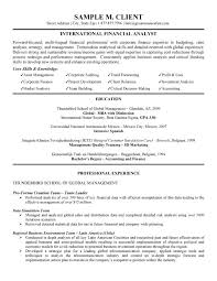 International Financial Analyst Resume Skills ...