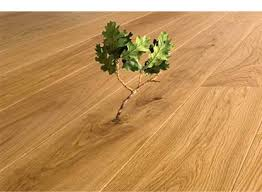 Captivating Eco Friendly Wood Flooring 54 About Remodel Modern Home with Eco  Friendly Wood Flooring