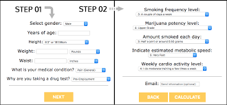 Hair Drug Test Chart Home Calculator Marijuana Central
