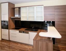 Modern Wooden Kitchen Designs Wonderful Home Kitchen Design For Apartments With Brown Wooden