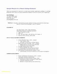 Internship Resume Sample For College Students New Resume Template