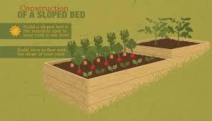 building raised gardening beds