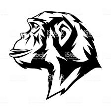 野生の猿の頭 アイコンのベクターアート素材や画像を多数ご用意 Istock