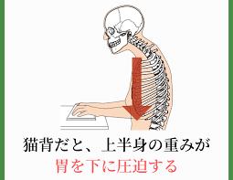 胃下垂 治し 方