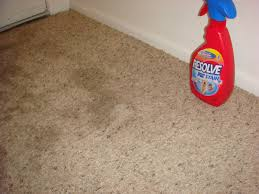 Vinegar and Baking soda tackle the carpet stains