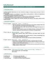 Professional Resume Format 17 A4 Techtrontechnologies Com