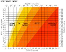 Obese Bmi Chart Obesity And Obesity Related Implications Fitness With Nicholas