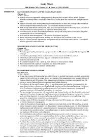 Sample Resume For Hr Senior HR Business Partner Resume Samples Velvet Jobs 39