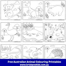 Small Picture Australian Animals Colouring Pages Australian animals and Free