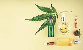 terpenes in medicine