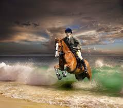 Desktop Wallpapers Horses Running Jump Waves Coast Animals