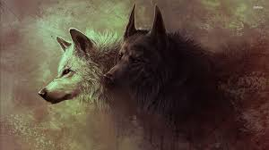 black and white wolf wallpaper. Throughout Black And White Wolf Wallpaper