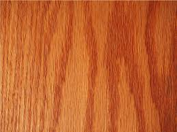 Types of woods for furniture Kitchen Cabinet Oak Trees Are Native To The Northern Hemisphere There Are Around 600 Species Of Oak Both Deciduous And Evergreen Oakwood Is Remarkably Strong Heavy Octane Seating Types Of Wood Guide To Choose The Best For Your Furniture