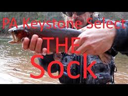 Loyalsock Creek Hatch Chart Fishing The Pa Select Loyalsock Creek