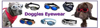 Welcome To Doggles Eyewear