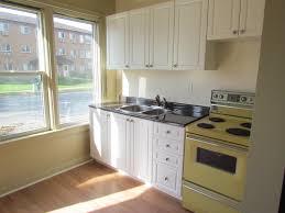 Remove Kitchen Cabinet Doors Kitchen How Much Are Kitchen Cabinet Doors How Much Do Cabinet