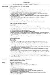 Manager Systems Resume Samples Velvet Jobs