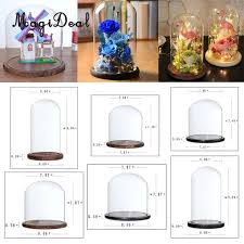 transpa glass display cloche bell flower jar dome diy micro landscape terrarium with wooden base wedding