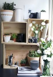 Amazing Home Office Plants Good Office Plants Office With Black Desk