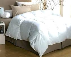 down comforter covers best rated queen where to goose duvet ikea review