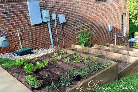 extraordinary terraced vegetable garden