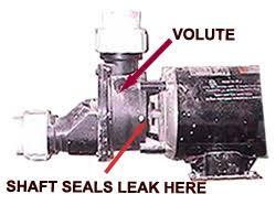 pool pump leaking at housing. Beautiful Housing Is Your Shaft Seal Leaking With Pool Pump Leaking At Housing