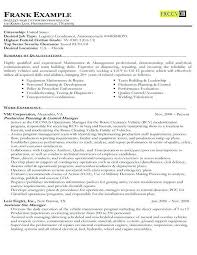 Usa Jobs Resume Classy Sample Usajobs Resume Example Of A Federal Government Resume Sample