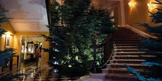 PHOTOS: Apple's Jony Ive designs Christmas tree for Claridge's ...