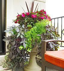 Container Garden Design Custom Decorating