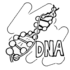 Small Picture Science Coloring Pages