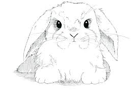 realistic rabbit coloring pages. Beautiful Realistic Bunny Coloring Pages Realistic  Mo  And Realistic Rabbit Coloring Pages