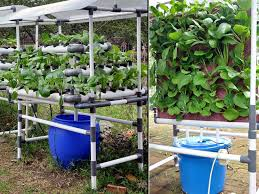 Kitchen Gardening For Beginners Raised Flower Beds Outdoor Decoration Ideas