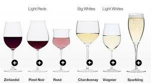 addthis 10 types of wine glass explained