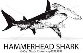 hammerhead shark clipart black and white. Plain Hammerhead Hammerhead Shark Clipart Black And White 2 For Hammerhead Shark Clipart Black And White D