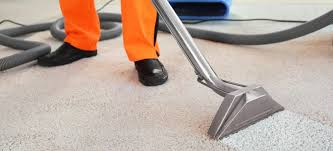 own natural carpet cleaning solution