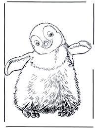 Pinguin 3 Kleurplaten Dierentuin