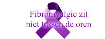 Afbeeldingsresultaat voor fibromyalgie